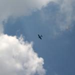 залізний кінь Ан-2 в небі